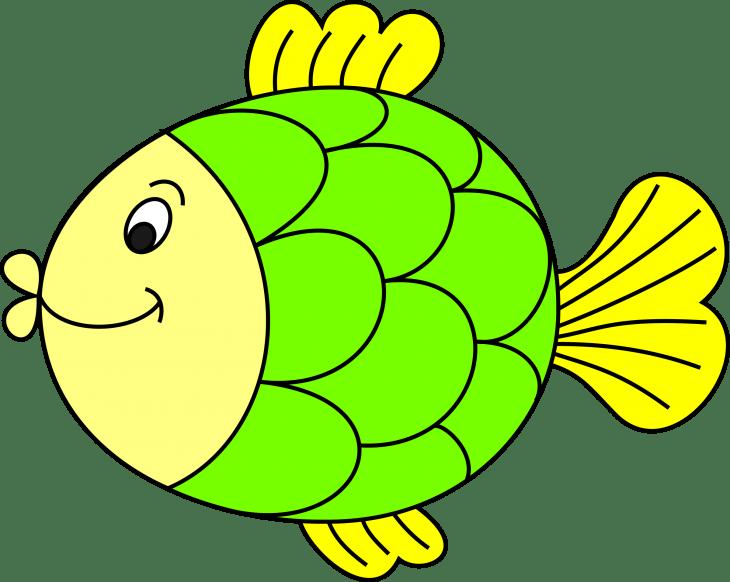 Цветная картинка рыбка