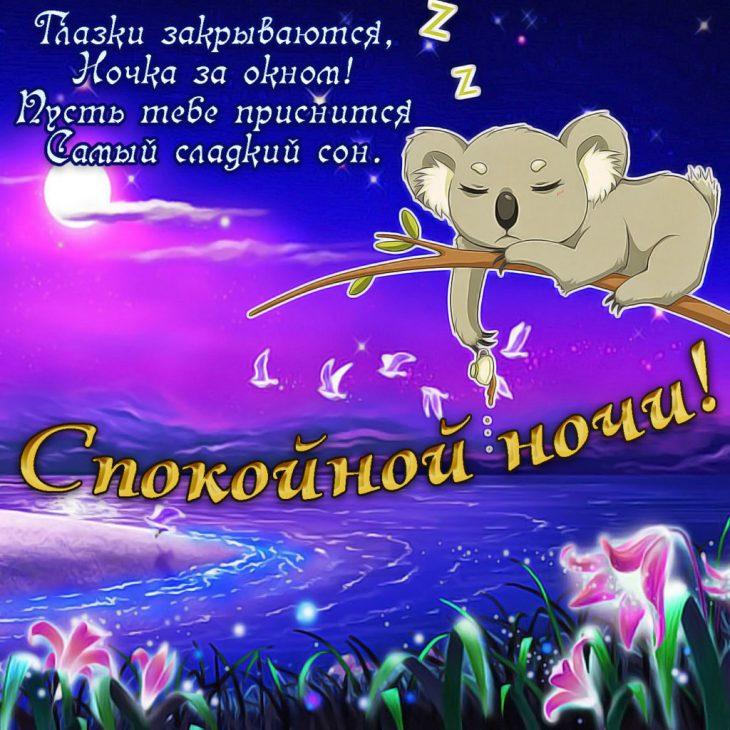 модель крокодиловой пожелания для хорошего сна нет
