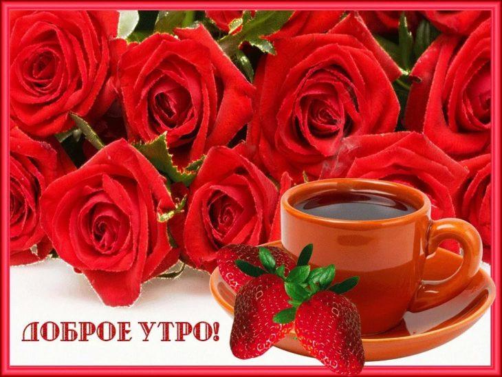 Картинки с цветами и пожеланиями доброго утра и хорошего дня