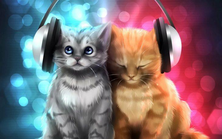 радиаторы арт картинки с котятами этого варианта