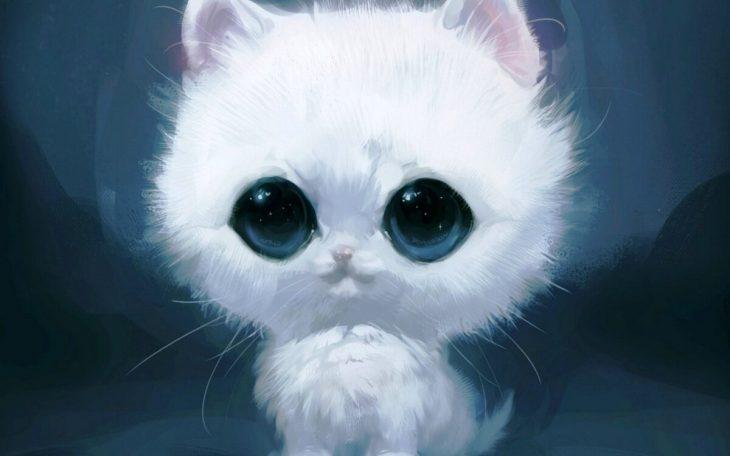 могут картинки котика с большими глазами это