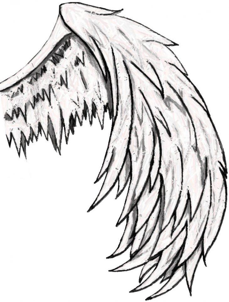 исключает крылья рисунок карандашом этого правила