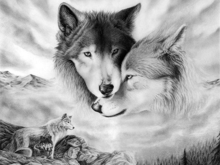 картинки волк для картинок обои картинки рабочий